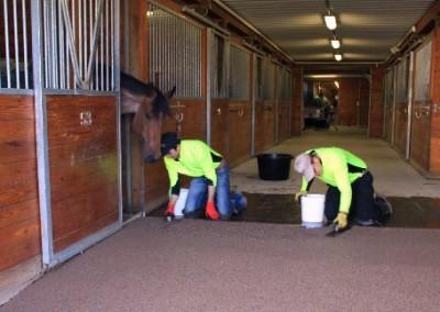 Installing Equine Flooring