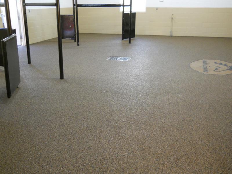 Veterinary Clinic Flooring