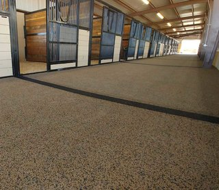 Horse Stable with Polylast